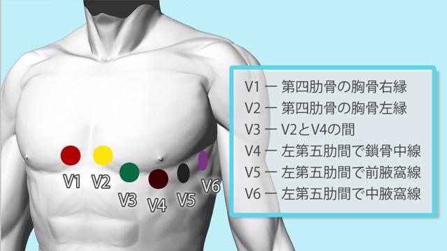 12誘導心電図 | 装着と測定