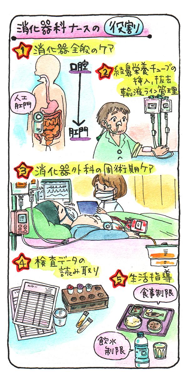 消化器科ナースの役割を表すイラスト。1:消化器全般のケア、2:経鼻栄養チューブの挿入、抜去、輸液ライン管理、3:消化器外科の周術期ケア、4:検査データの読み取り、5:生活指導(食事制限・飲水制限)