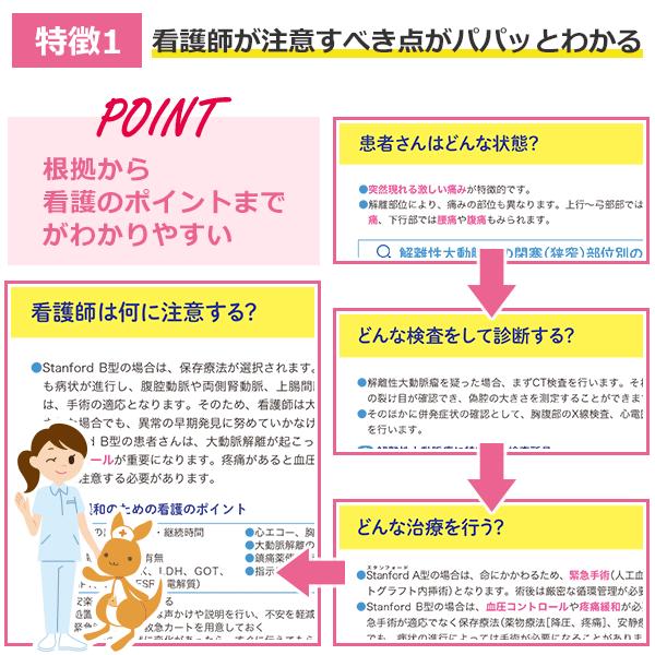 特徴の説明図1