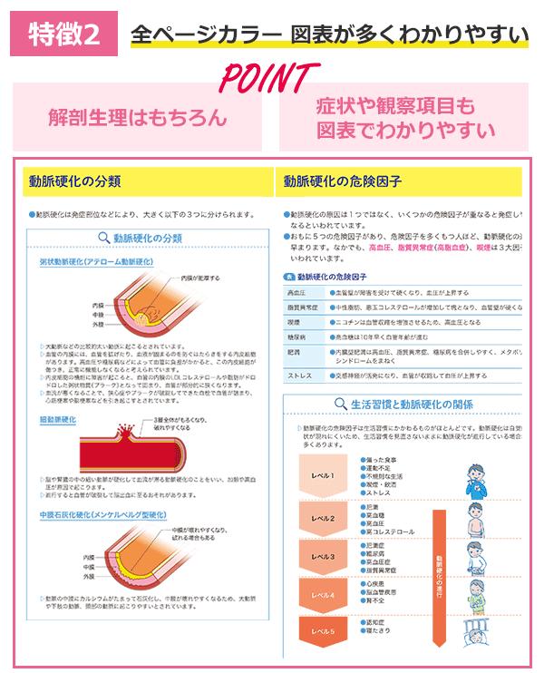 特徴の説明図2