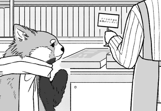 挿絵イラスト。書店の本棚でPOPを飾る店主とそれを見るお客さんのレッサーパンダ