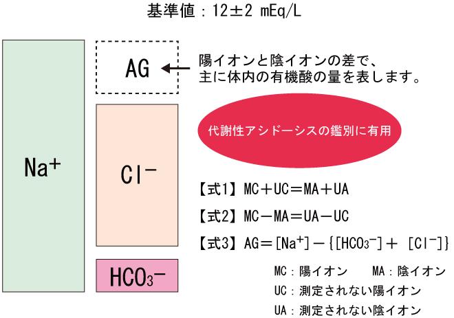 アニオン・ギャップ_Anion Gap_AG_代謝性アシドーシス