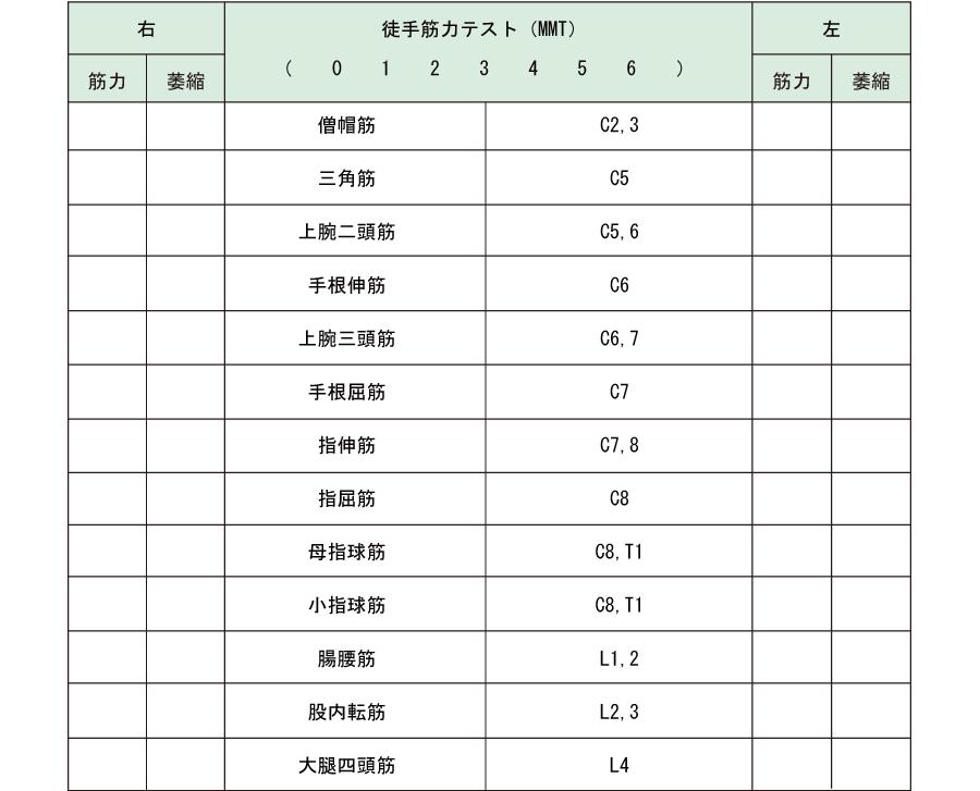 MMT記録表 徒手筋力テスト記録表
