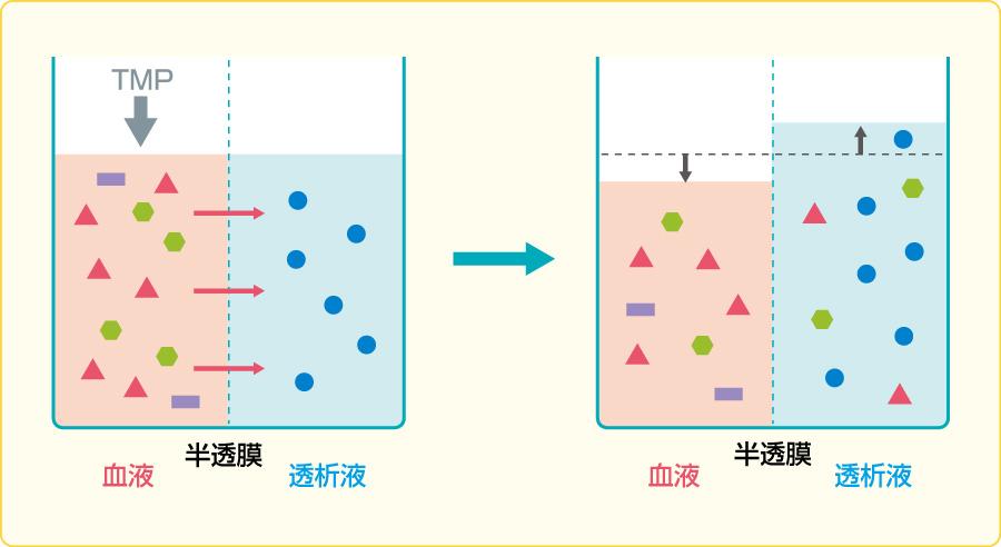 濾過の原理