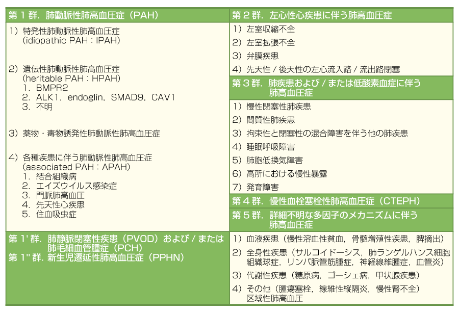 再改訂版肺高血圧症臨床分類(文献2より引用)