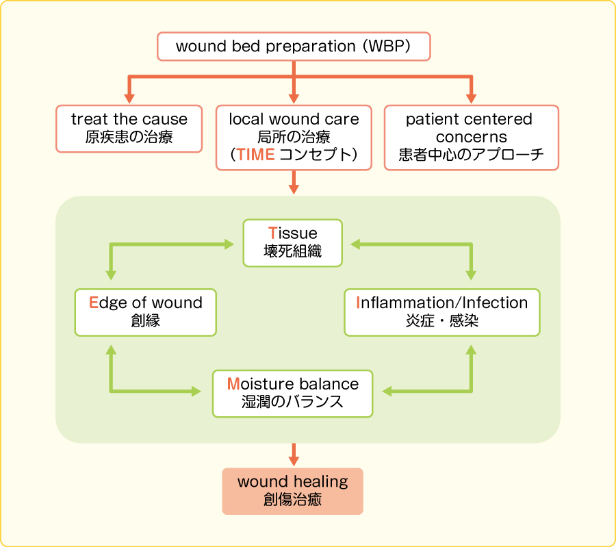 wound bed preparation(WBP)の構成要素