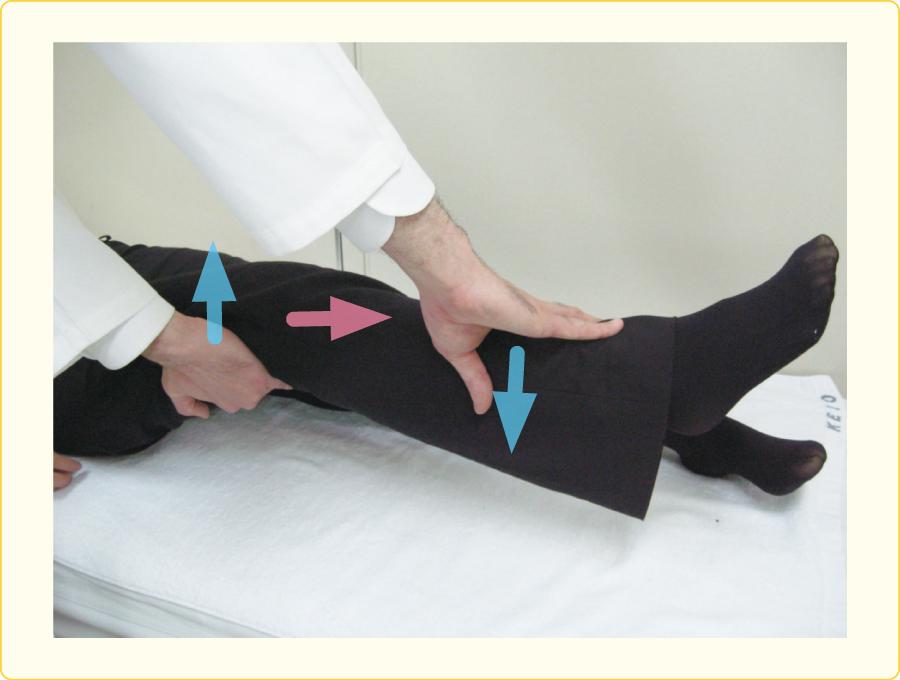 大腿四頭筋の診察