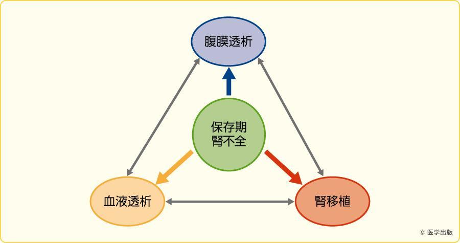 流動的な腎代替療法の実践