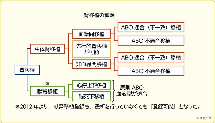 腎移植の種類