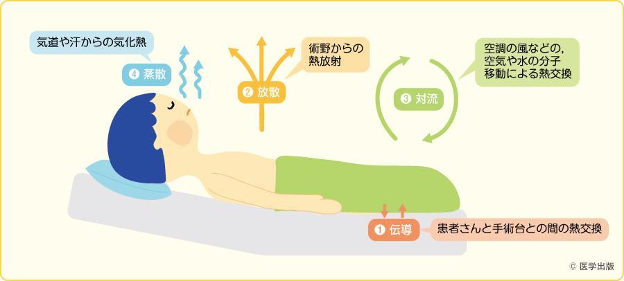 熱の移動(文献1)を参考に作成)