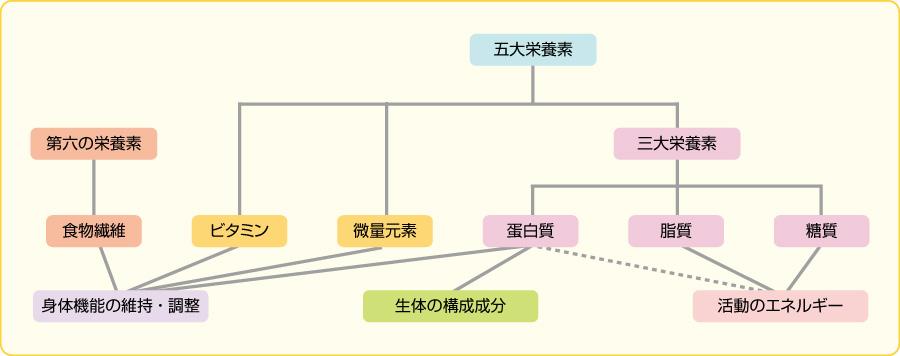 図7栄養素の種類