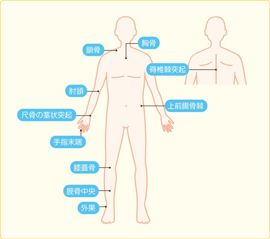 振動覚の主な検査部位