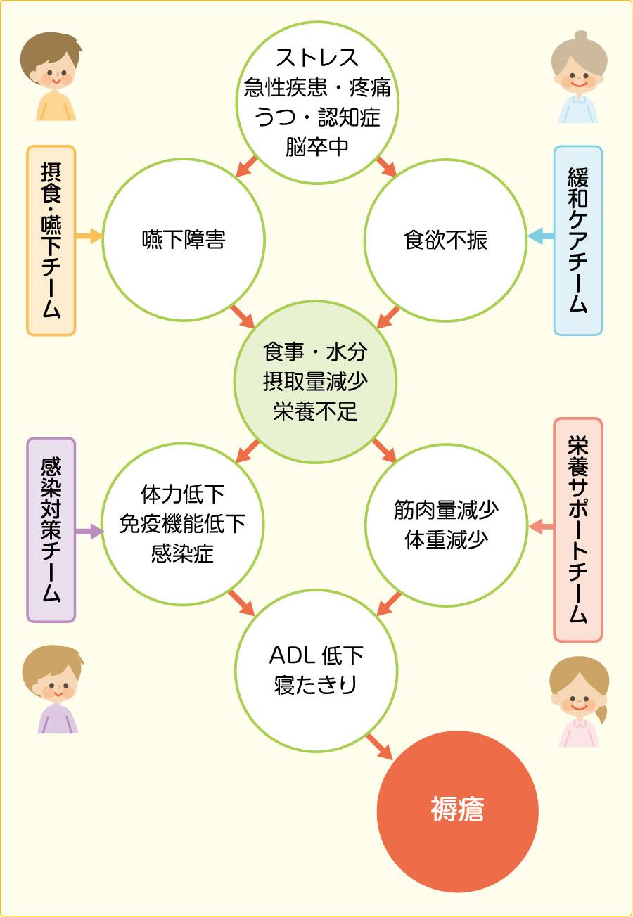 褥瘡発生の過程とチーム介入