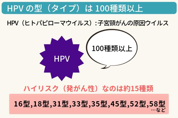 HPV(ヒトパピローマウイルス)タイプの説明図。100種類以上の型があるうち、発がん性のあるハイリスクのタイプは16型、18型など約15種類
