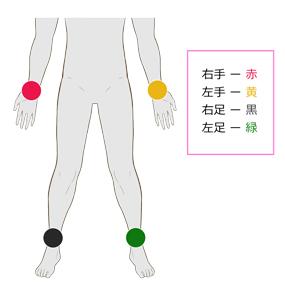 12誘導心電図の電極を装着する位置を表したイラスト(四肢)
