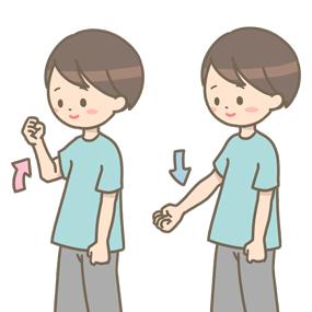 肘の曲げ伸ばし運動のイラスト