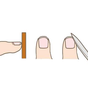 爪の長さの目安・形・やすりがけをしている(フットケア)イラスト