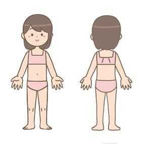 女の子の身体の前面・背面のイラスト