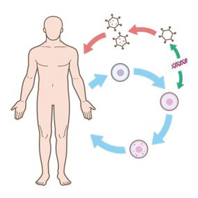 遺伝子治療を表したイラスト