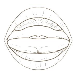 乳児の口腔内のイラスト※着色なし
