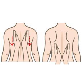 胸郭振盪のイラスト