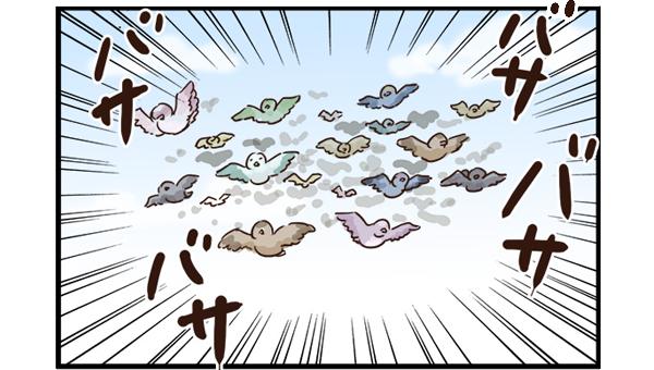 大量の小鳥が飛んできた!