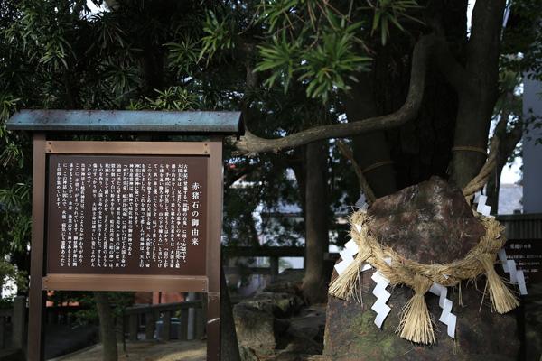 国試合格祈願に最適? 日本最古のナース神&神社のウワサを究明するの巻 | 第103回看護師国家試験・直前準備号011