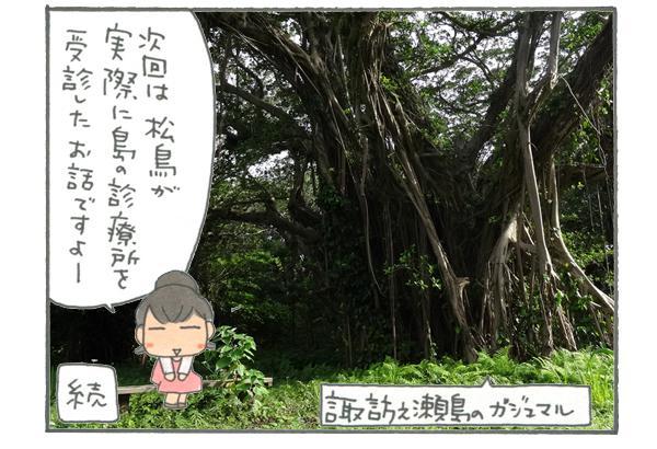 次回は、筆者松鳥が実際にトカラの島の診療所を受診したお話です!写真は諏訪之瀬島のガジュマル。