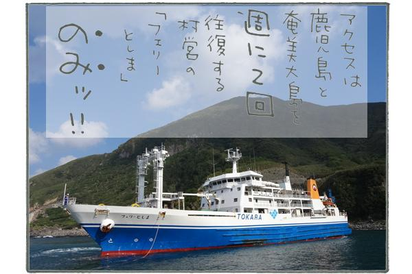 アクセスは、鹿児島と奄美大島を週に2回往復する、村営の「フェリーとしま」のみ。