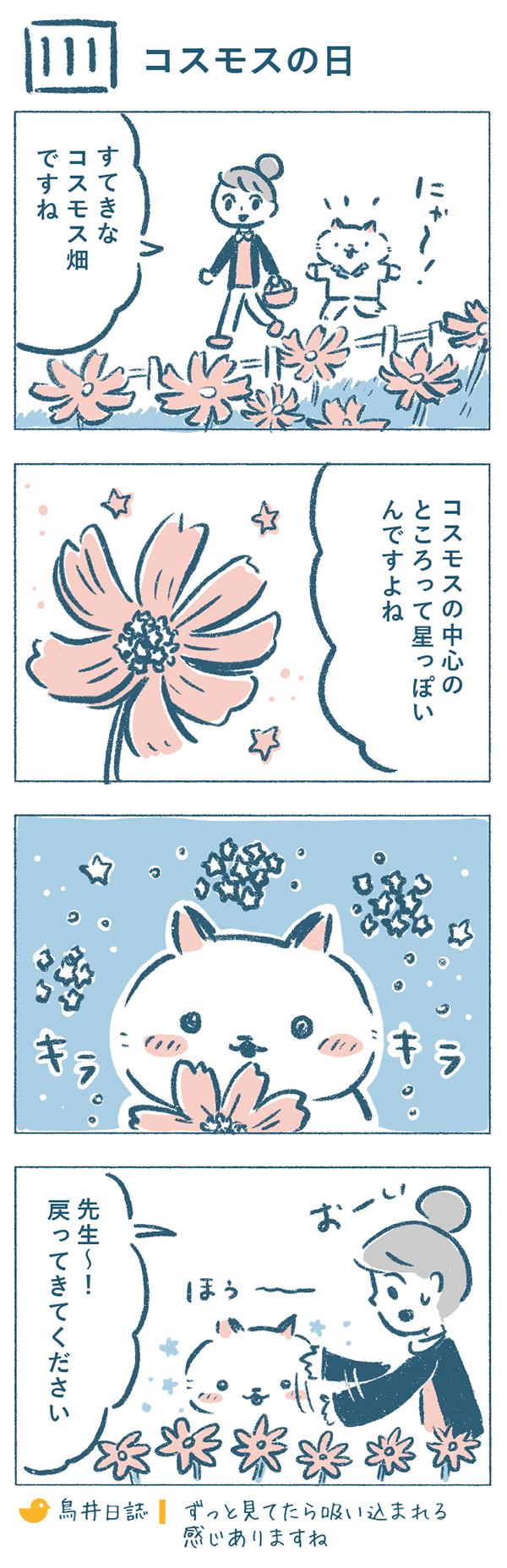 散歩中、コスモス畑を見つけた奈央子とねこやま先生。奈央子が、「コスモスの中心のところって星っぽいんですよね。」というと、ねこやま先生は、じっと花を観察し始めました。キラキラを眺めるうちに、吸い込まれるような感覚があり、「先生~!戻ってきてください」と言われてしまう奈央子なのでした。