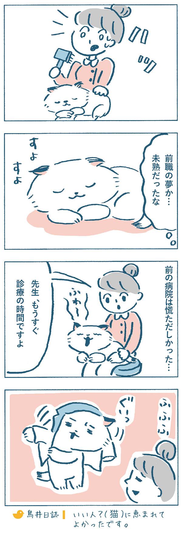 そこで「ハッ」と目が覚め、自分がねこやま先生のトリミング中に寝てしまったことに気がつきました。奈央子の膝の上ですよすよと寝ているねこやま先生を見ながら、『前職の夢か…未熟だったな。前の病院は慌ただしかった…。』と過去を思い出しました。寝ぼけながら白衣をきるねこやま先生を見ながら、いい人?(猫)に恵まれてよかったなと思う奈央子なのでした。