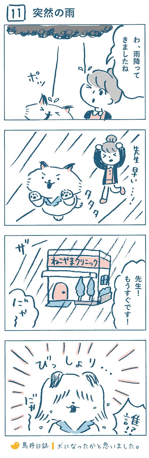タイトル:突然の雨。ねこやま先生と奈央子が食事を終えて帰っていると、雨がポツリと降り始めました。2人はあわててクリニックに走って戻りました。到着してねこやま先生を見ると、びっしょり濡れて、いつもと別人のようでした。犬になったかと思った奈央子なのでした。