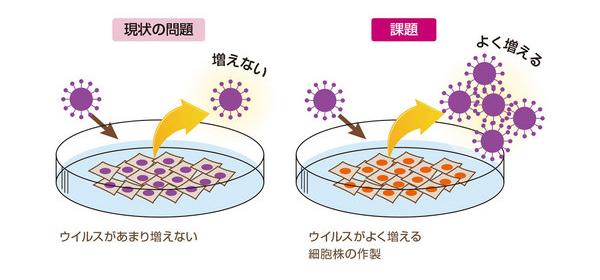 細胞培養ワクチンの課題のイメージ図