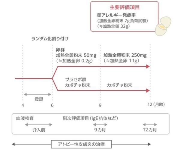 PETIT試験のプロトコールの図