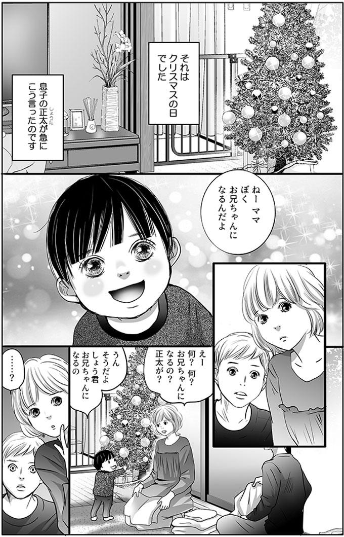 それはクリスマスの日でした。息子の正太が急にこう言ったのです。「ねーママぼくお兄ちゃんになるんだよ。」母親は、「えー何?何?お兄ちゃんになるの?正太が?」というと、「うんそうだよ。しょう君お兄ちゃんになるの。」とはっきりという息子を不思議に思いました。