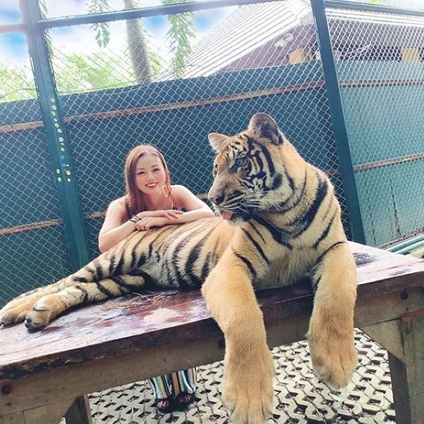 看護師長野じゅりあさんが海外でトラと一緒に撮影した写真