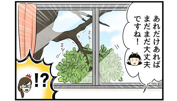 看護師よし子「あれだけ葉っぱあれば、まだまだ大丈夫ですね!」