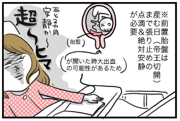 前置胎盤は、帝王切開で産む日まで張り止めの点滴&絶対安静が必要なため、2ヵ月絶対安静・・・つまり、超ヒマ