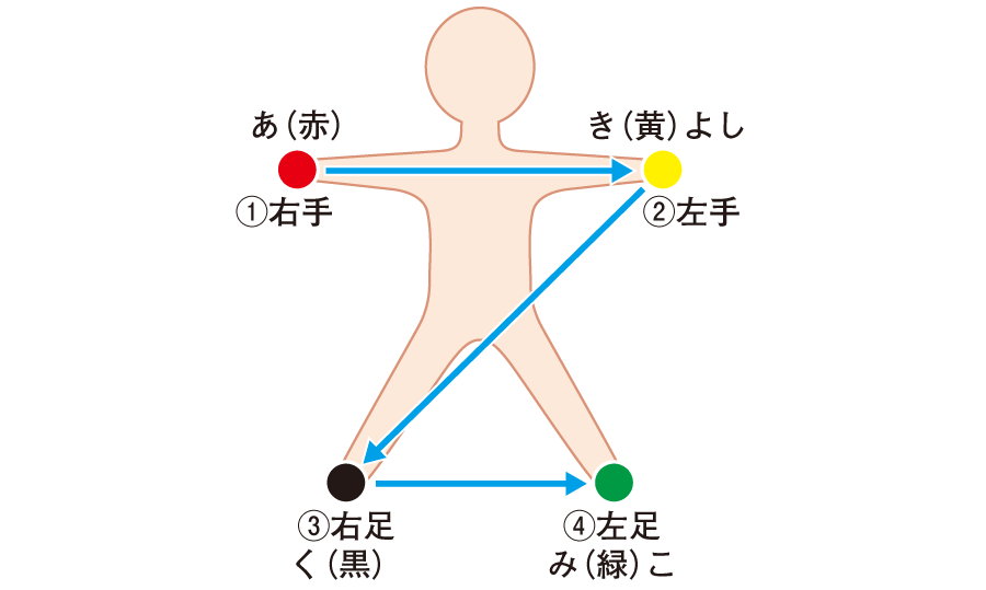 電極の色と装着位置