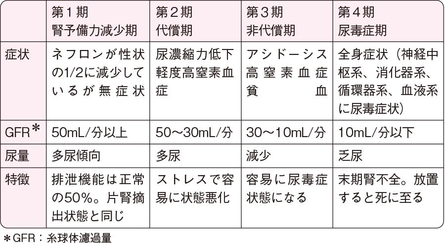 慢性腎不全の病期(セルジン分類)