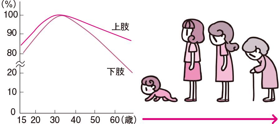 加齢に伴う筋力・姿勢の変化