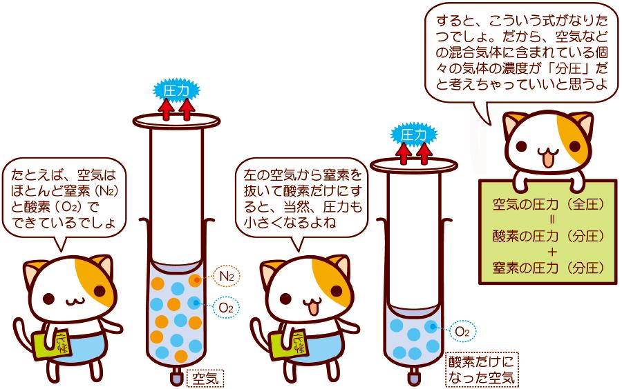ガス分圧の考え方