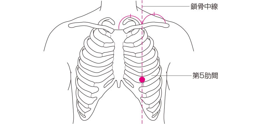 心尖部の位置