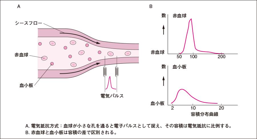 自動血球計数装置の原理