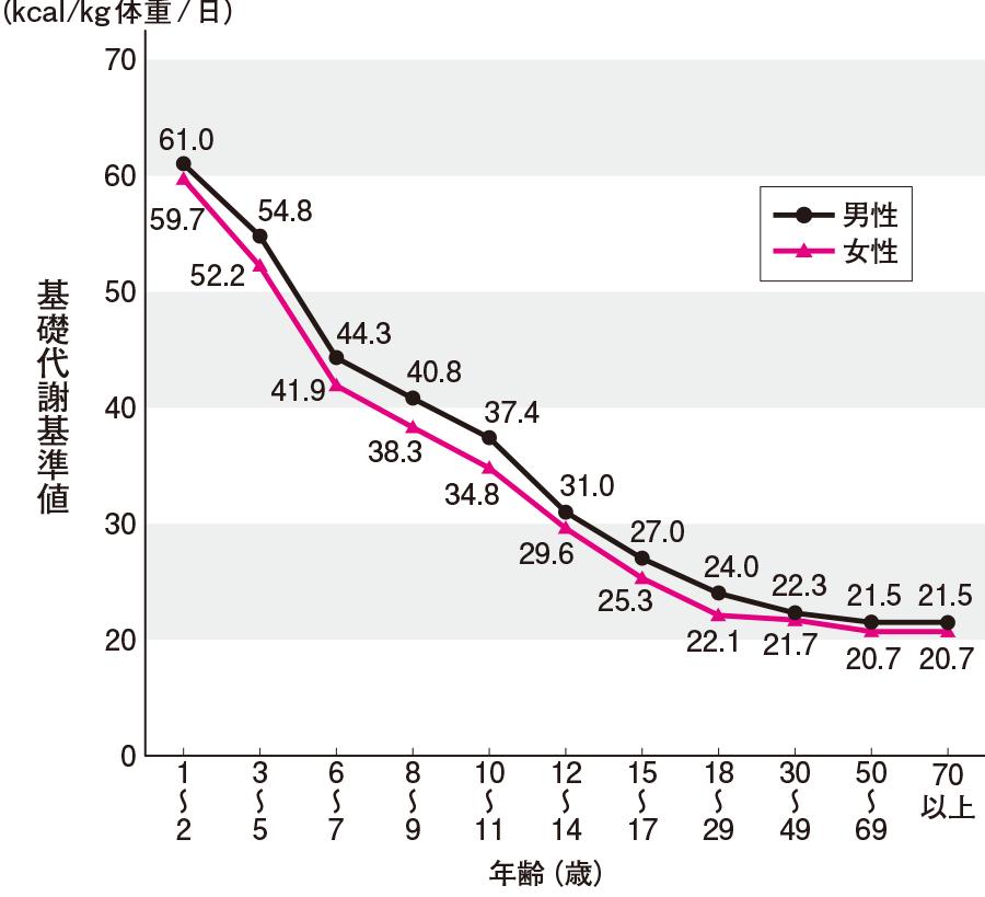 基礎代謝量の年齢的推移と男女の差異