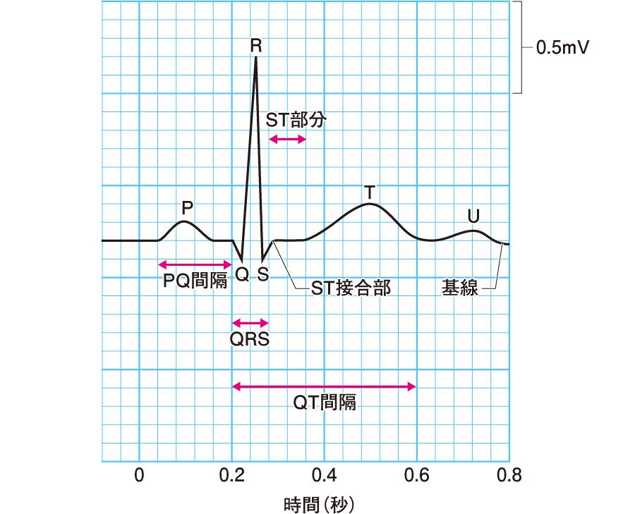 正常心電図の各波の名称