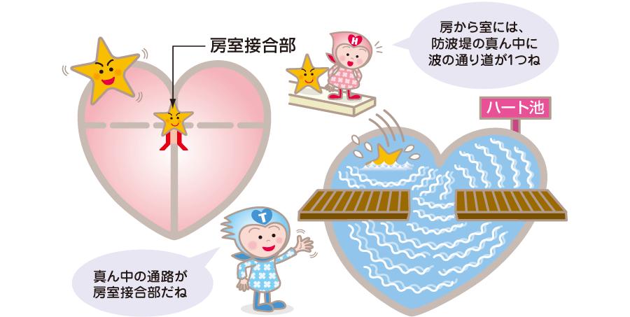 心房と心室を結ぶ房室接合部