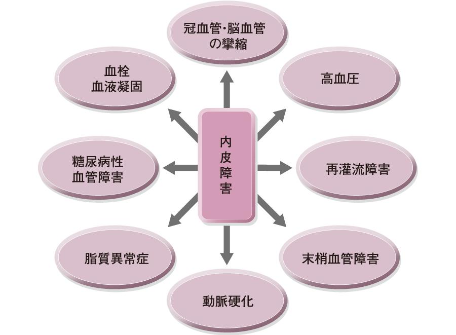 内皮細胞障害によって起こる循環疾患
