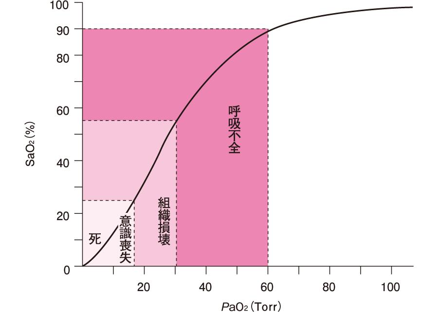 呼吸不全患者の看護 看護計画 - happycampus.co.jp