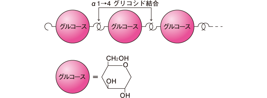 糖質の基本構造